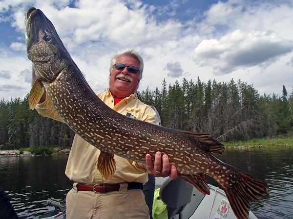 Lake Trout Fishing Walleye Fishing In Canada Northern
